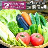 【ふるさと納税】SGN15【定期便年4回】阿波の国海陽町旬のお野菜詰め合わせセット