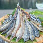 【ふるさと納税】NSM03海陽町産のお魚を使った絶品干物鮎や太刀魚など7種類セット!