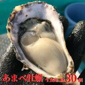 【ふるさと納税】RBL01【限定50セット受付開始!】海陽町産真牡蠣約1キロ(約10個)