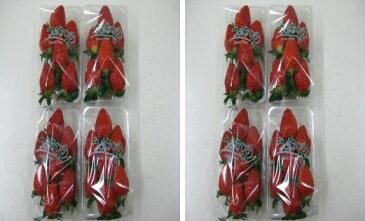 【ふるさと納税】【2月以降発送】いちご「さぬきひめ」2kg 【果物類/いちご/苺/イチゴ/フルーツ】 お届け:2019年2月上旬〜5月下旬