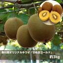 【ふるさと納税】香川県オリジナルキウイ「さぬきゴールド」約3...