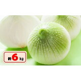 【ふるさと納税】新たまねぎ 約6kg 【野菜・玉ねぎ・たまねぎ・タマネギ】 お届け:2021年3月中旬〜5月下旬
