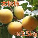 【ふるさと納税】まるで梨の食感「太秋柿(たいしゅうがき)」約3.5kg 【果物類・柿・かき・フルーツ】 お届け:2021年9月上旬〜10月上旬
