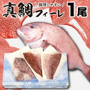 【ふるさと納税】真鯛フィレ1尾分鯛魚鮮魚産地直送送料無料
