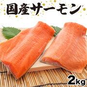 【ふるさと納税】さぬきさーもん2kgサーモン魚鮮魚産地直送送料無料