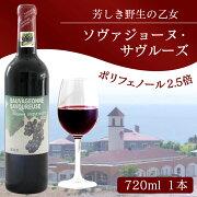【ふるさと納税】ワインソヴァジョーヌ・サヴルーズ1本赤ワイン