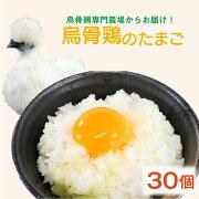 【ふるさと納税】烏骨鶏の卵30個セット
