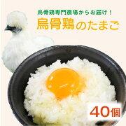 【ふるさと納税】烏骨鶏の卵40個セット