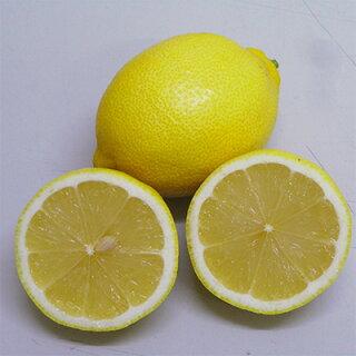 レモンへのこだわり