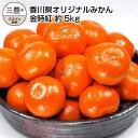 【ふるさと納税】香川県オリジナルみかん 「金時紅」 約5kg...