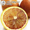 【ふるさと納税】国産希少オレンジ 「ブラッドオレンジ」 約5kg