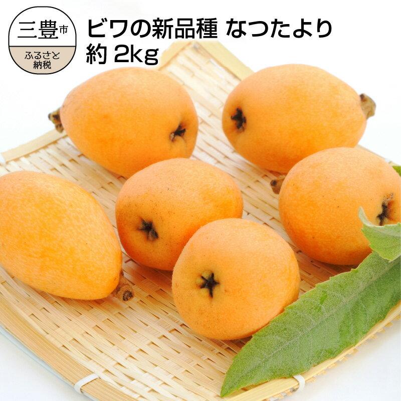 フルーツ・果物, びわ  2kg
