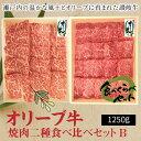【ふるさと納税】オリーブ牛 焼肉二昧食べ比べセットB 2