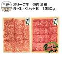 【ふるさと納税】オリーブ牛 焼肉二昧食べ比べセットB 1