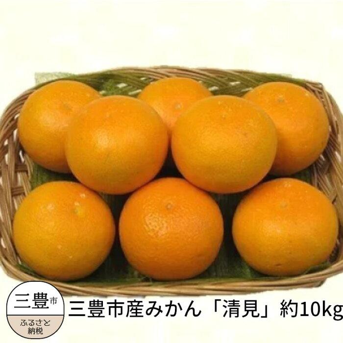 【ふるさと納税】三豊市産みかん「清見」約10kg