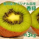 【ふるさと納税】香川オリジナルキウイフルーツ「香緑(こうりょ...