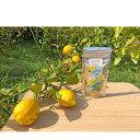 【ふるさと納税】小豆島ドライレモン 【加工食品・果物類・柑橘