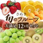 【ふるさと納税】1019さぬき旬のフルーツ大満足12ヶ月セット