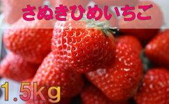 【ふるさと納税】032三木町地域いちご部会「さぬきひめ」1.5kg