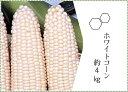 【ふるさと納税】ホワイトコーン 約4Kg | 琴平 琴平町 ...