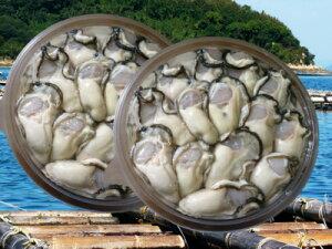 【ふるさと納税】(予約受付中:旬にお届け!2021年1月から期間限定出荷!)香川県多度津町産 白方かき むき身 400g×2パック(加熱用)〔提供:株式会社 牡蠣屋りょうせん〕