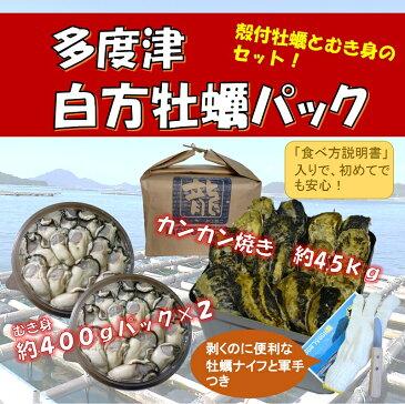 【ふるさと納税】(予約受付中:旬にお届け!2019年2月からの期間限定出荷!)多度津 白方 牡蠣パック (加熱用)〔提供:株式会社 牡蛎屋りょうせん〕