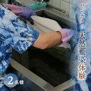 【ふるさと納税】天然藍染体験(ハンカチ)2名様<体験館 城山横丁> F21Q-528