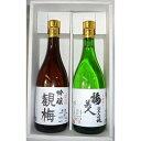 【ふるさと納税】純米大吟醸梅美人720mlと吟醸観梅720mlのセット