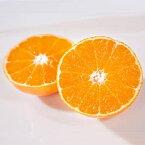 【ふるさと納税】ミヤモトオレンジガーデンの「まごころまどんな(愛媛果試28号)」4kg【訳あり】【C25-50】【1128815】