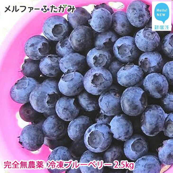 フルーツ・果物, ブルーベリー  2.5kg
