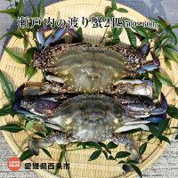 瀬戸内の渡り蟹2匹500〜600g