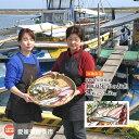 【ふるさと納税】<目利き女将厳選 瀬戸内の旬のお魚 2.5k...