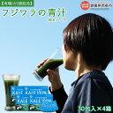 【ふるさと納税】<フジワラの青汁・粉末タイプ(30包入)×4...