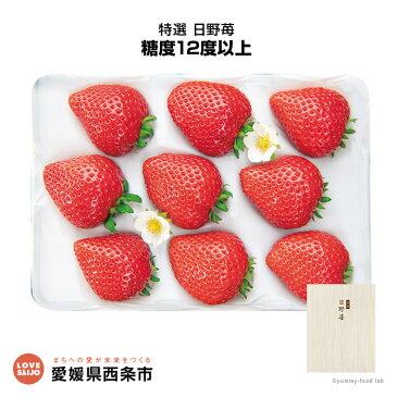 【ふるさと納税】<特選 日野苺(約450g)> ※2019年2月末迄に順次出荷します。 イチゴ いちご 愛媛県 西条市 【冷蔵】