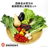<西条名水育ちの新鮮野菜と果物セット>