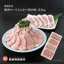 【ふるさと納税】<愛媛県産 豚肉ロースとんかつ用 メガ盛20...
