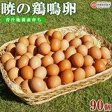 青汁地養育ち暁の鶏鳴卵90個
