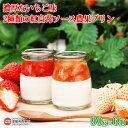 【ふるさと納税】<濃厚ないちご味 2種類の紅白苺ソース農果プ...