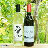 光ワイン「赤」「白」各1本セット
