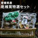 【ふるさと納税】愛媛県産乾椎茸特選セット 【乾物・干し椎茸・干ししいたけ・加工食品・乾椎茸・乾物・しいたけ】