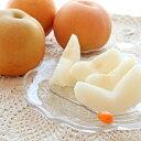 【ふるさと納税】高知県産 新高梨 約3kg・6玉 特産品