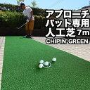 【ふるさと納税】ゴルフ・アプロー...