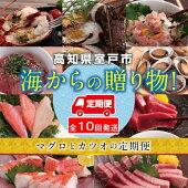 【ふるさと納税】TK007漁師からのうまいもん定期便【年10回コース】