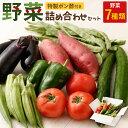 【ふるさと納税】野菜詰め合わせセット(特製ポン酢付) 訳あり 傷 送料無料<RK008>