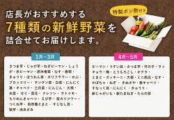 【ふるさと納税】野菜詰め合わせセット(特製ポン酢付) 訳あり 傷 送料無料<RK008> 画像2