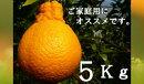 RK15デコポン5kg