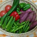 【ふるさと納税】RK−62野菜7種のミニセット(ポン酢のおま...