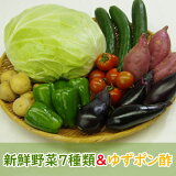 【ふるさと納税】RK008野菜7種とポン酢セット