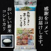 【ふるさと納税】RK024室戸・大地の恵み米【2合×1パック】