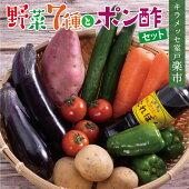 【ふるさと納税】野菜詰め合わせセット(特製ポン酢付)送料無料<RK008>